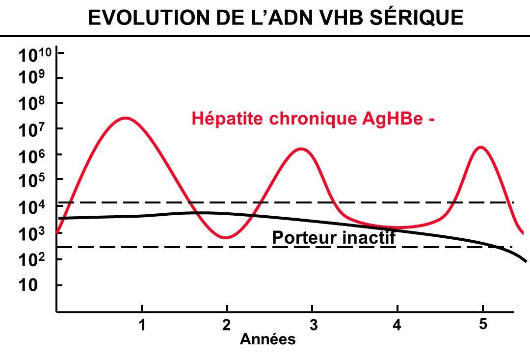 OBJECTIFS DU TRAITEMENT Inhibition de la réplication virale Diminution de lactivité histologique Arrêt de la progression de la fibrose Prévention de la cirrhose Prévention du CHC Amélioration de la survie Pas déradication virale