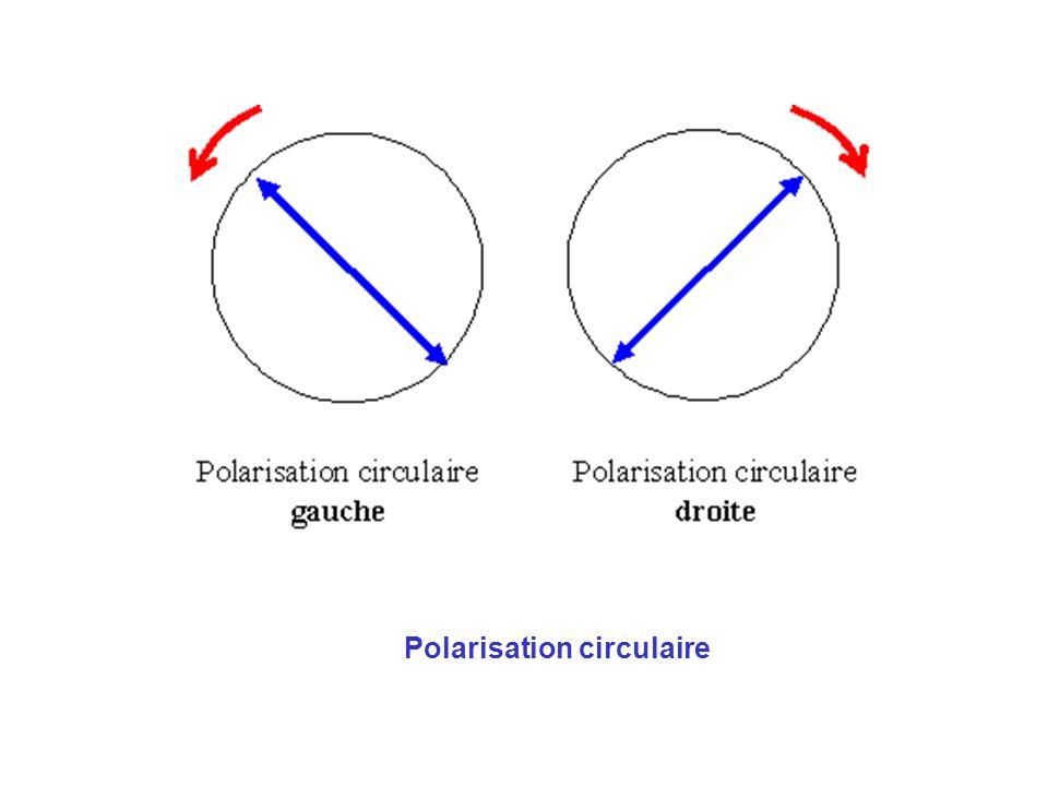 Cas de la lumière avec 1- polarisation rectiligne