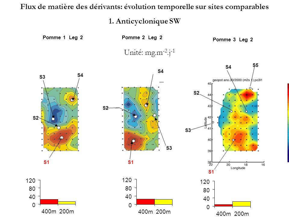 S3 S1 S2 S4 Pomme 1Leg2 S3 S4 Pomme 2Leg2 S1 S2 Pomme 3Leg2 S1 S2 S3 S4 S5 Unité: mg.m -2.j -1 Flux de matière des dérivants: évolution temporelle sur sites comparables 2.