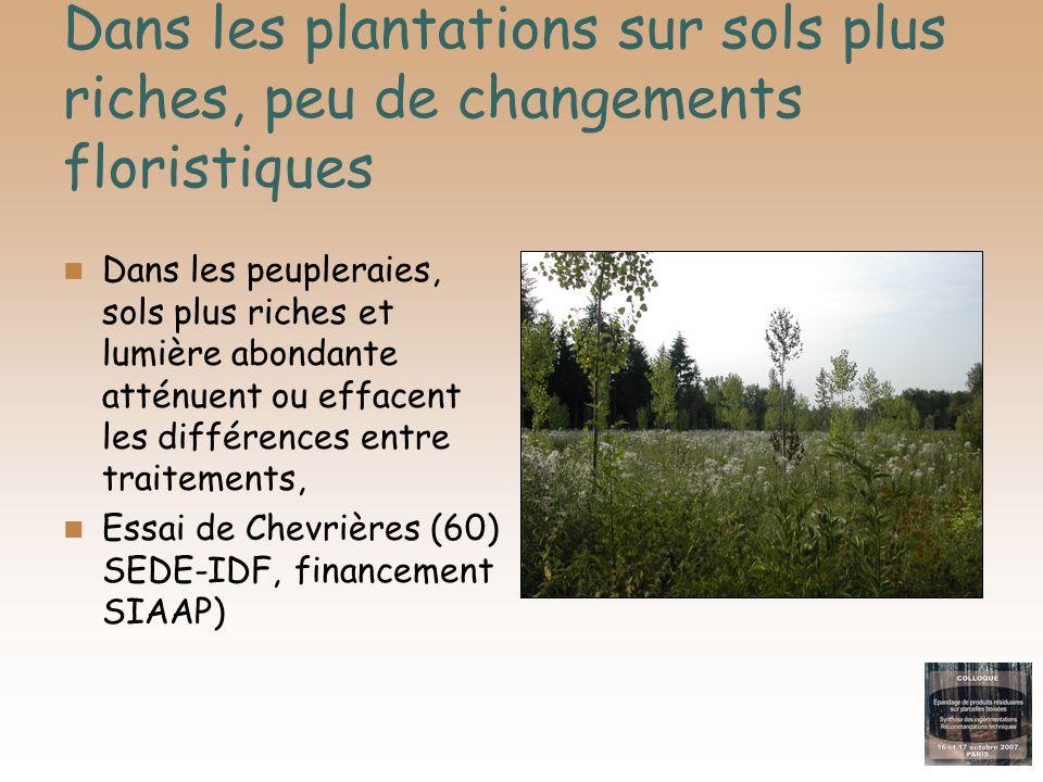 Le transfert dETM aux plantes du sous-bois Les différences avec le témoin sont nulles ou faibles… Quand elles existent (manganèse), elles vont le plus souvent dans le sens dune baisse par rapport au témoin, Cela serait la conséquence dune insolublisation partielle (élévation de pH consécutive aux apports de CaCO3), ou parfois dun effet de dilution (augmentation de la biomasse)..