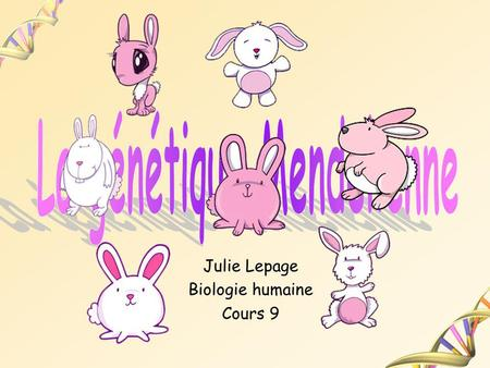 Julie Lepage Biologie humaine Cours 9