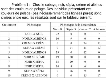 Phénotypes de la descendance