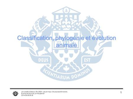Classification, phylogénie et évolution animale
