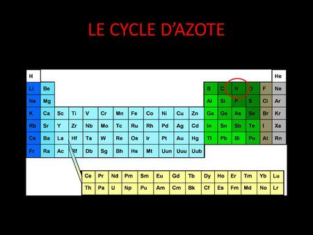 LE CYCLE D'AZOTE.