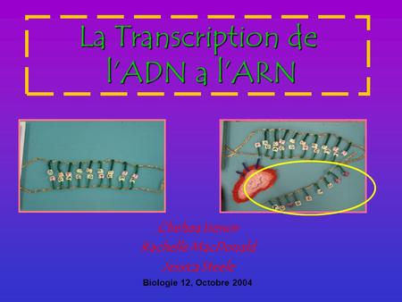 La Transcription de l'ADN a l'ARN