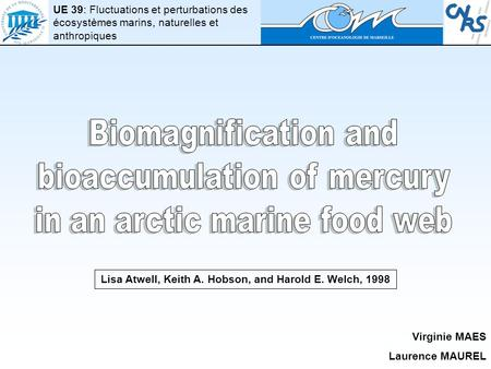 Lisa Atwell, Keith A. Hobson, and Harold E. Welch, 1998 Virginie MAES Laurence MAUREL UE 39: Fluctuations et perturbations des écosystèmes marins, naturelles.