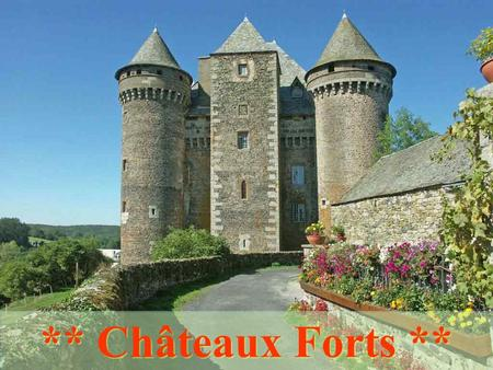 ** Châteaux Forts ** Aigues-Mortes (30) Angers (49)