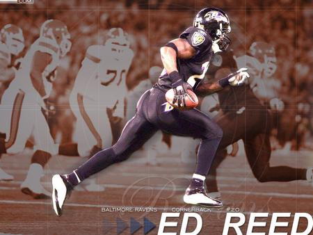 Ed Reed Safety, Baltimore Ravens. Ed Reed a révolutionné la position de maraudeur ( Safety ) dans la NFL ( Ligue Nationale de Football ).Ed Reed a révolutionné.