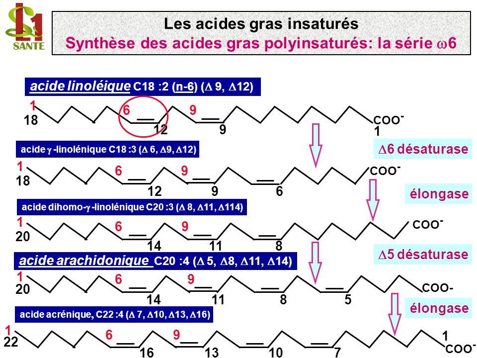 acide linolénique C18 :3 (n-3) ( 9, 12, 15) acide stéaridonique C18 :4 ( 6, 9, 12, 15) 6 désaturase 19 COO - 18 196 12 3 15 COO - 96 9126 13 18 1 15 acide 8,11,14,17 eicosatetraénoïque C20 :3 ( 8, 11, 14, 17) élongase COO - 9 6 11148 13 20 17 acide 5,8,11,14,17 eicosapentaénoïque C20:5 ( 5, 8,, 14, 17) EPA 5 désaturase 11148 COO - 96 5 13 20 17 Les acides gras insaturés Synthèse des acides gras polyinsaturés: la série 3