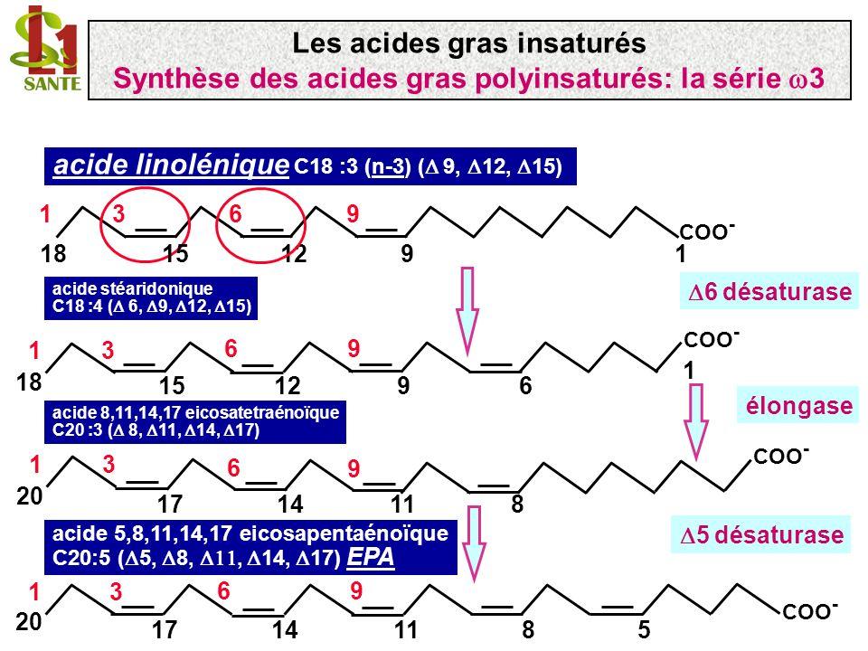 Synthèse de lacide gras en C22 (DHA): cas particulier acide 5,8,11,14,17 eicosapentaénoïque C20:5 ( 5, 8, 11, 14, 17) EPA 11148 96 5 13 20 17 COO - acide C22:6 ( 4, 7, 10, 13, 16, 19) docosahexaénoïque; DHA COO - 1 22 96 1316107 13 194 .