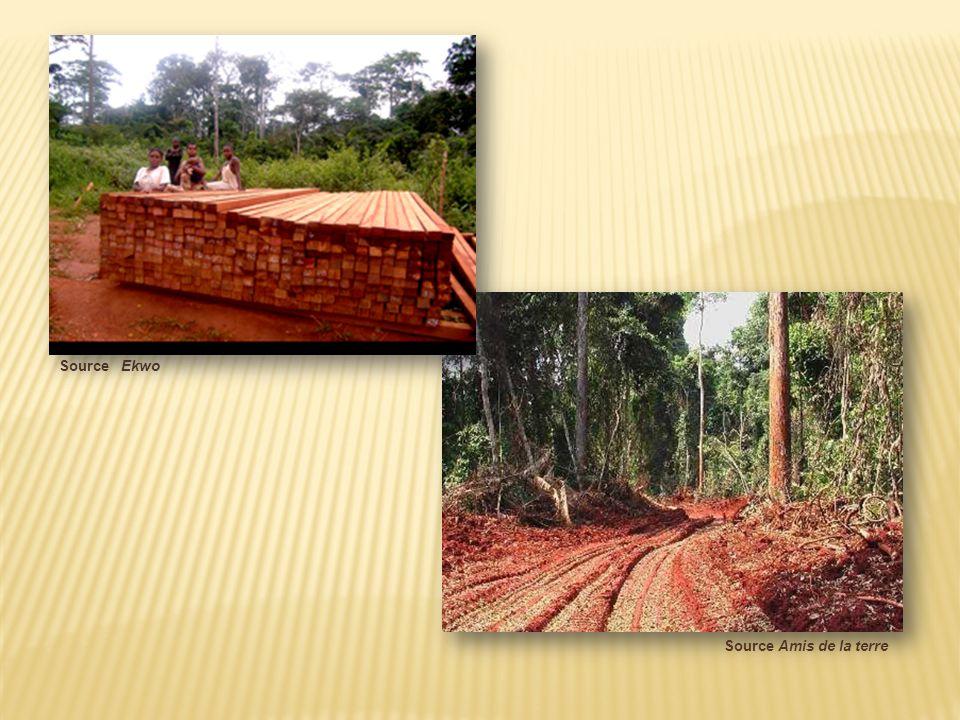 Concessions forestières et aires protégées Source CETELCAF Surface cumulée des concessions forestières actives et abandonnées Concessions forestières non attribuées Aires protégées Surface forestière 1992-93 Végétation autre que la forêt
