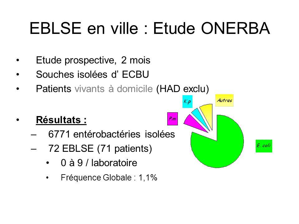 EBLSE en ville : caractérisation des enzymes 16 enzymes différentes (8 CTX-M, 7 TEM, 1 SHV) 48 E.