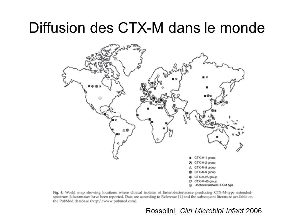 Rossolini, Clin Microbiol Infect 2006 Diffusion des CTX-M au sein des éspèces