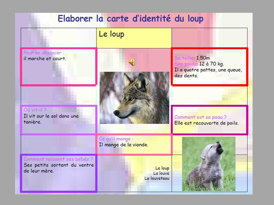 Domaine 4 : S informer, se documenter Situations : Objectif Lire un document numérique.