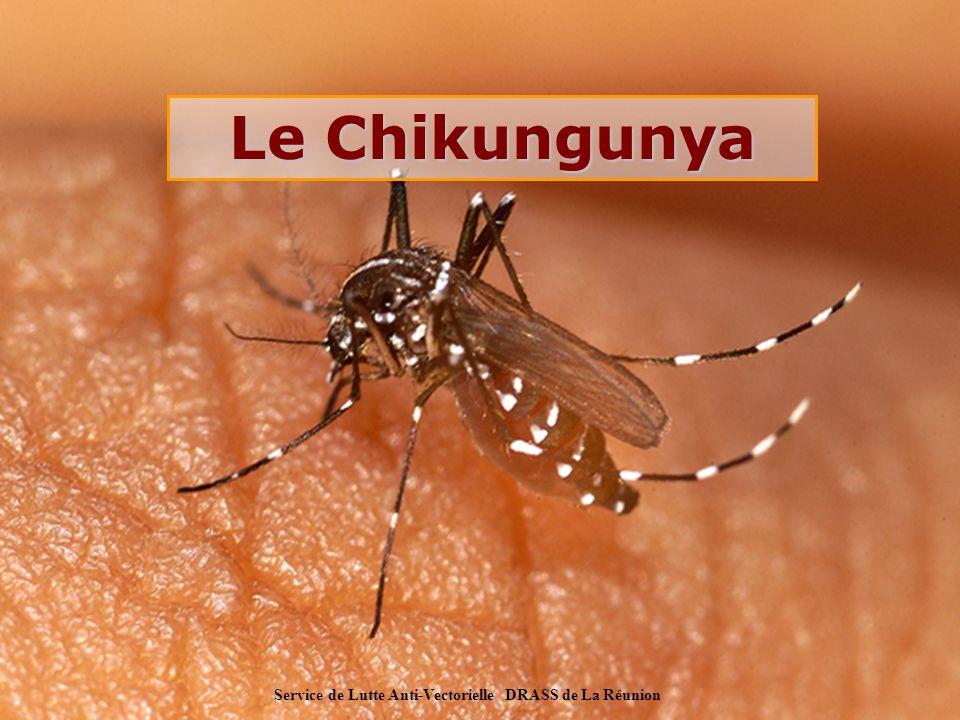 Service de Lutte Anti-Vectorielle DRASS de La Réunion Virus Chikungunya Agent infectieux : Arbovirus (alphavirus) isolé pour la première fois en Tanzanie et Ouganda (1953) signification du mot : le mal qui casse les os marcher courbé (Souahéli) pas de cas mortel connu chez l Homme