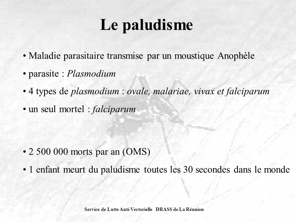 Service de Lutte Anti-Vectorielle DRASS de La Réunion Problématique réunionnaise Paludisme éliminé à La Réunion depuis 1979, mais : persistance du vecteur (A.
