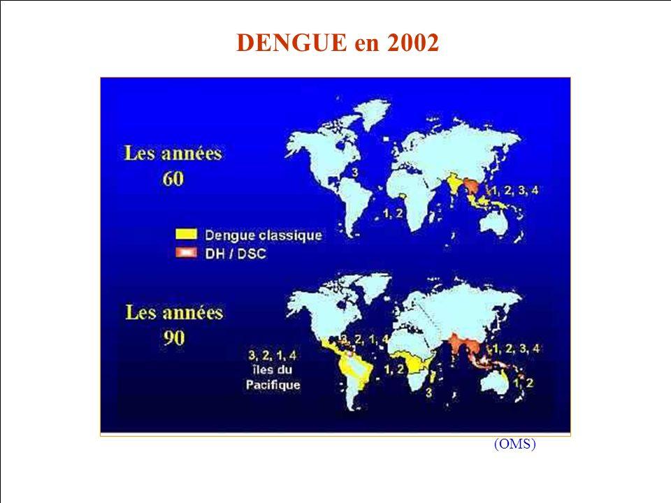 Service de Lutte Anti-Vectorielle DRASS de La Réunion LE VIRUS Le virus de la dengue est un arbovirus (virus transmis par un arthropode vecteur) de la famille des flavivirus Autres flavivirus * fièvre jaune * West Nile * encéphalite japonaise 4 sérotypes différents de la Dengue (DEN 1 à 4) pas dimmunité croisée entre les différents sérotypes