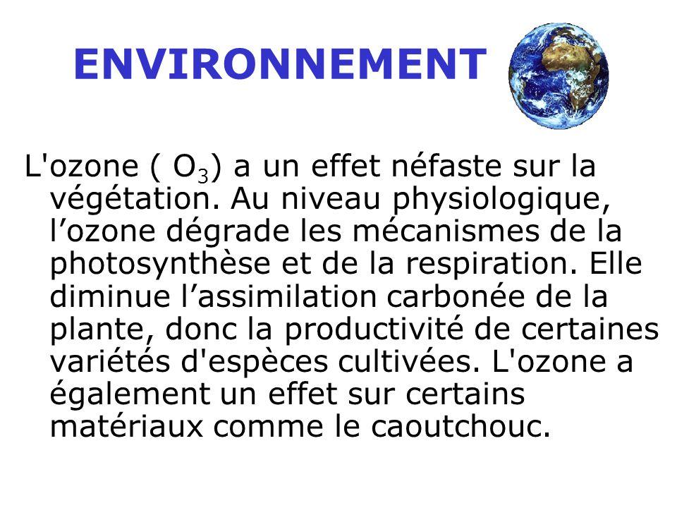 L ozone ( O 3 ) a un effet néfaste sur la végétation.