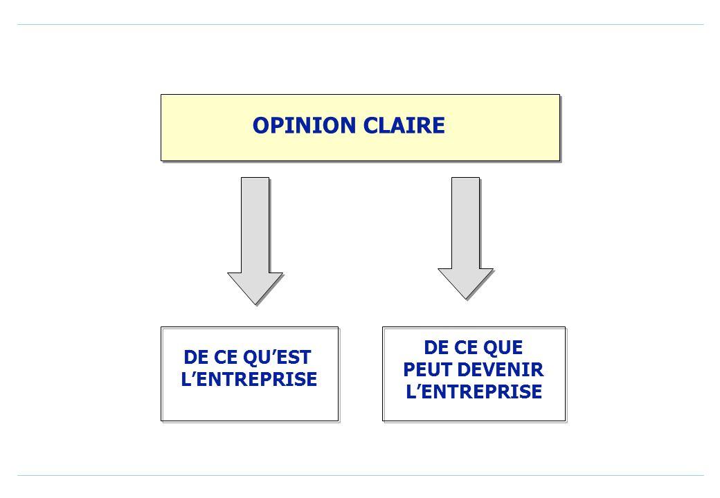 OPINION CLAIRE DE CE QUEST LENTREPRISE DE CE QUE PEUT DEVENIR LENTREPRISE
