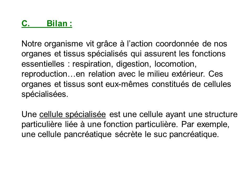 II.Quels sont les besoins des cellules de lorganisme pour assurer leur activité .