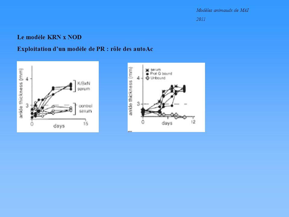 Modèles animaudx de MAI 2011 Le modèle KRN x NOD Exploitation dun modèle de PR : rôle des lymphocytes T et B
