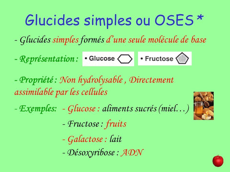 Glucides COMPOSES ou DIOSIDES* - Glucides composés dun enchaînement de 2 oses reliés par une liaison osidique* - Représentation : - Propriété : hydrolysable - Exemples: - Maltose : étape de la digestion de lamidon - Saccharose : sucre de canne et réserve chez certains végétaux - Lactose : produits lactés.