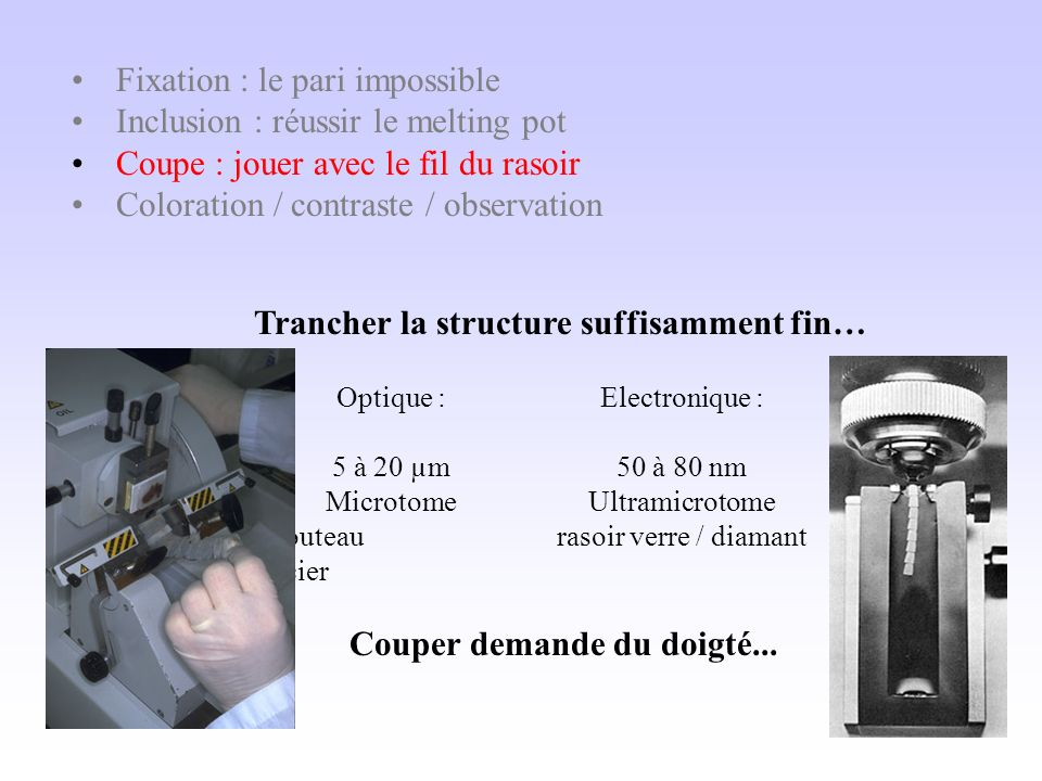 Les principes fondateurs 1 - Histologie = microscopie !… 2 - Le tiercé infernal : Fixation/inclusion/contraste - couper implique dinclure - inclure implique de fixer - observer implique de contraster...
