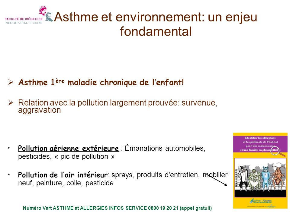 Asthme et environnement: un enjeu fondamental Mécanismes en jeux : irritation, pro inflammation, synergie .