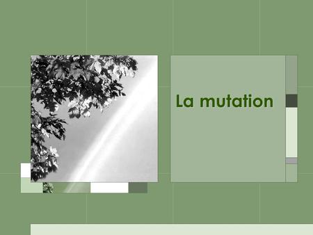 La mutation. Quand on pense aux mutations, on pense à quoi?
