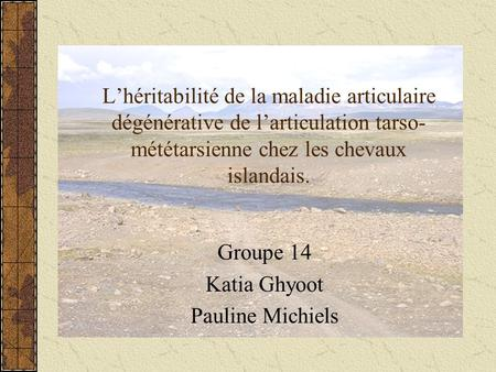 Groupe 14 Katia Ghyoot Pauline Michiels
