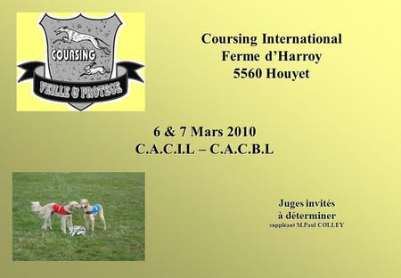 6 & 7 Mars 2010 C.A.C.I.L – C.A.C.B.L Juges invités à déterminer suppléant M.Paul COLLEY Coursing International Ferme dHarroy 5560 Houyet.