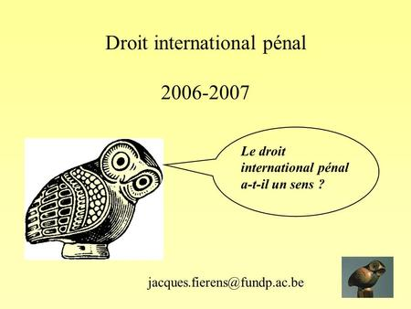 Droit international pénal 2006-2007 Le droit international pénal a-t-il un sens ?