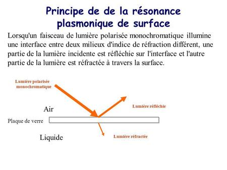 Principe de de la résonance plasmonique de surface