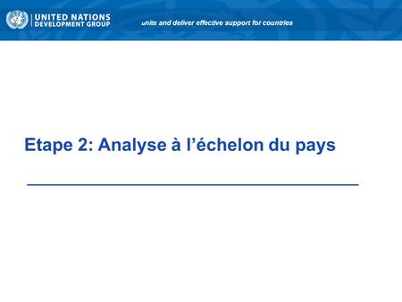 Etape 2: Analyse à léchelon du pays u nite and deliver effective support for countries.