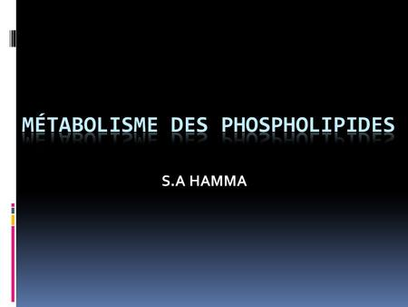 S.A HAMMA. INTRODUCTION 1 Phospholipides Sphingomyélines Glycérophospholipides.