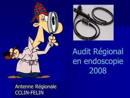 Audit Régional en endoscopie 2008