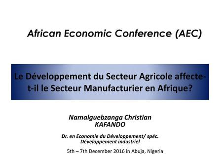 African Economic Conference (AEC)