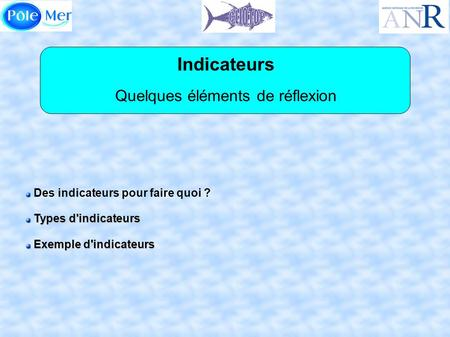 Indicateurs Quelques éléments de réflexion Des indicateurs pour faire quoi ? Types d'indicateurs Types d'indicateurs Exemple d'indicateurs Exemple d'indicateurs.