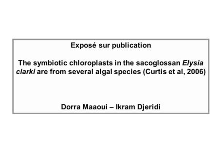Exposé sur publication The symbiotic chloroplasts in the sacoglossan Elysia clarki are from several algal species (Curtis et al, 2006) Dorra Maaoui – Ikram.
