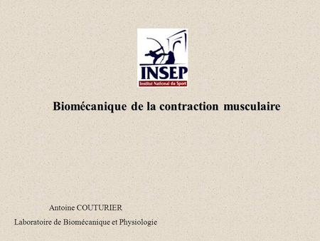 Biomécanique de la contraction musculaire