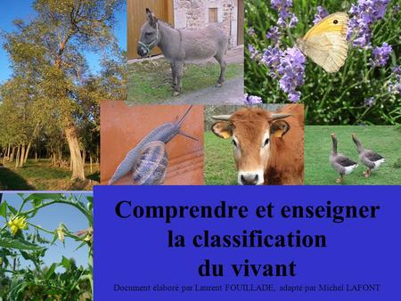 Comprendre et enseigner la classification du vivant Document élaboré par Laurent FOUILLADE, adapté par Michel LAFONT.