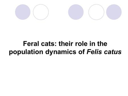 Feral cats: their role in the population dynamics of Felis catus.