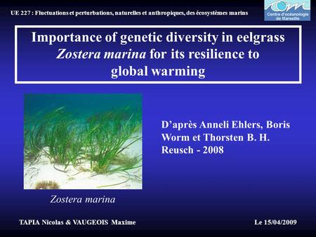 Importance of genetic diversity in eelgrass Zostera marina for its resilience to global warming D'après Anneli Ehlers, Boris Worm et Thorsten B. H. Reusch.