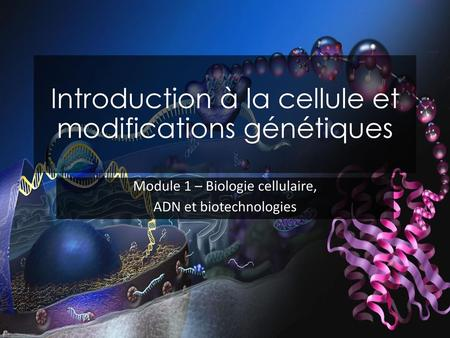 Introduction à la cellule et modifications génétiques