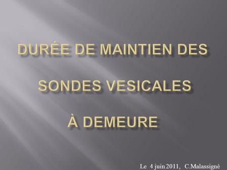 Plan du cours sondage v sical infections urinaires for Chambre urinaire