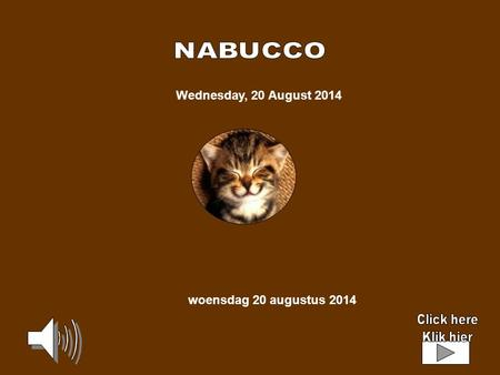 Wednesday, 20 August 2014 woensdag 20 augustus 2014.