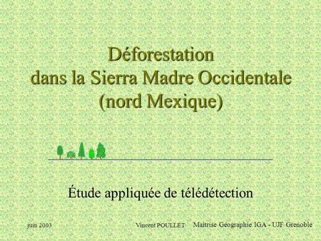 Déforestation dans la Sierra Madre Occidentale (nord Mexique)