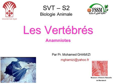 SVT – S2 Biologie Animale