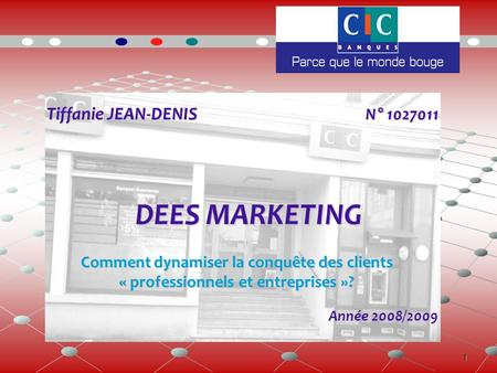 1 Tiffanie JEAN-DENIS N° 1027011 Tiffanie JEAN-DENIS N° 1027011 DEES MARKETING Année 2008/2009 Comment dynamiser la conquête des clients « professionnels.