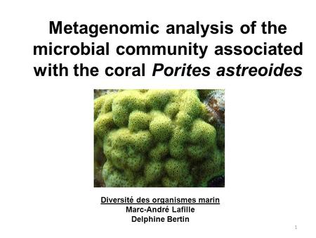 Metagenomic analysis of the microbial community associated with the coral Porites astreoides Diversité des organismes marin Marc-André Lafille Delphine.